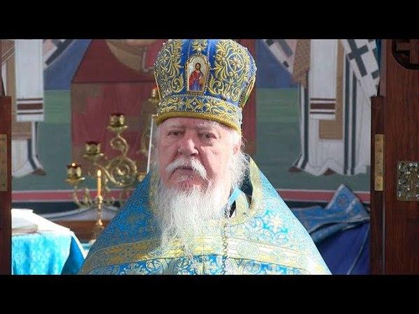 Протоиерей Димитрий Смирнов. Проповедь о спасении через милость Божию