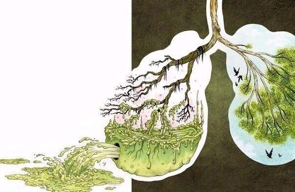 если вы собираетесь начать здоровый образ жизни - самое время очистить организм от ненужного и ядовитого! ☢  </p><p><div id=