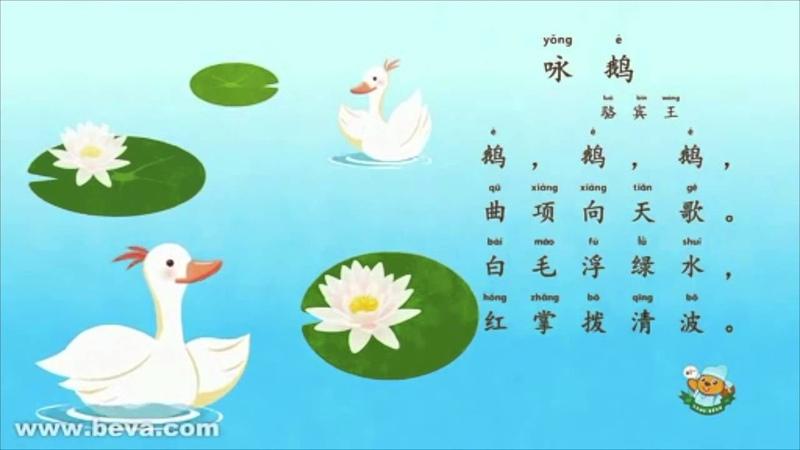 300 Tang Poems 唐诗三百首:咏鹅 Geese, O Geese by Luo Binwang