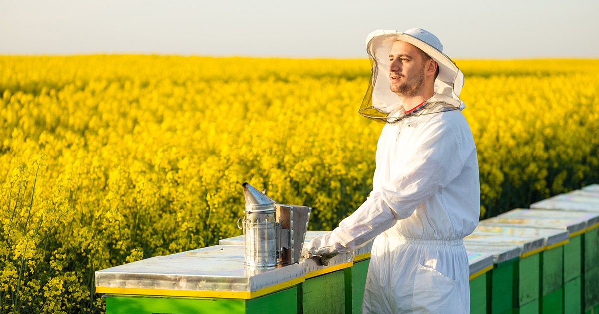 Органическое пчеловодство