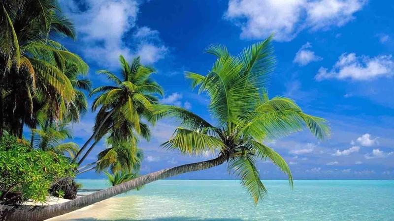 Hainan Island travel guide/Amazing China Adventure Trip 2017 -Hainan Island,Sanya -魅力中国2017游记-海南三亚