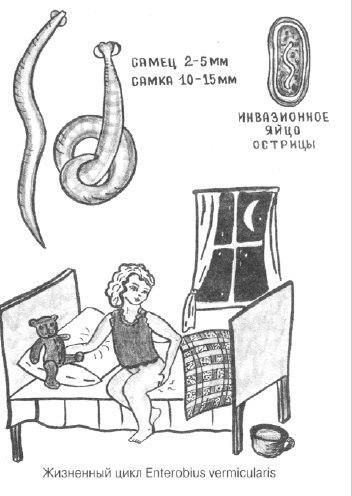 Как вылечить раздражение слизистой горла