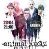 Animal ДжаZ | Курск | 28.04.2018 | Новый альбом