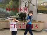 Тебердинский заповедник .Музей.The Teberdinsky reserve .Museum.