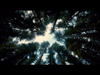 John Tavener - Funeral Canticle (Excerpt) [The Tree of Life]