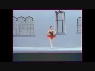 Ekaterina maksimova & vladimir vasiliyev in excerpt from the ballet don quixote.