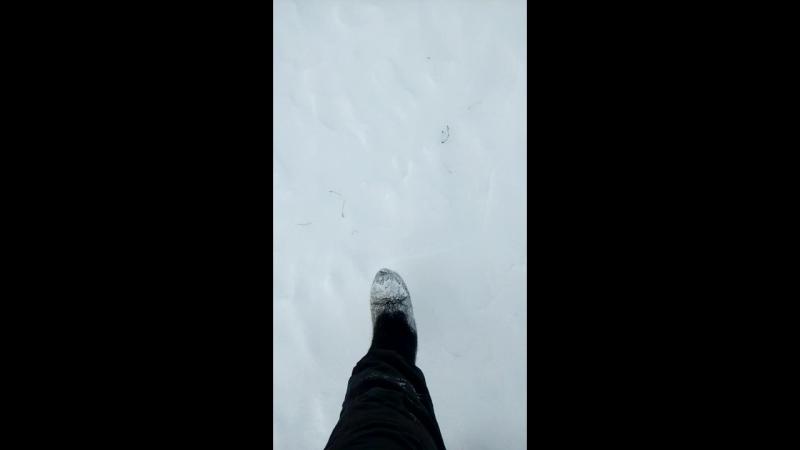 Скрип снега на Ямале 27