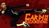 30 Min. Cardio Kickboxing Workout Vol. 3 Vengeance