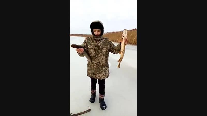 рибалка 2