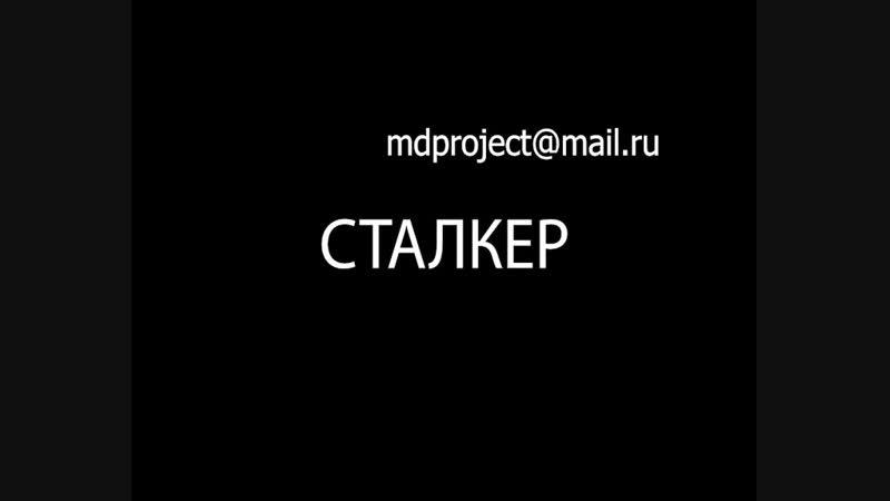 Рерберг и Тарковский Обратная сторона Сталкера