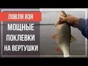 Рыбалка НА РЕКЕ. Попали на КЛЕВ ЯЗЯ. Ловля НА ВЕРТУШКИ