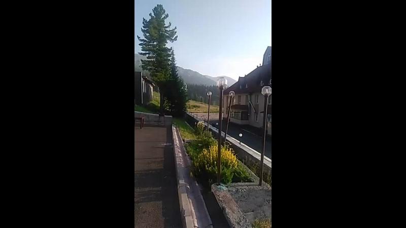 Надежда Гордеева - Live