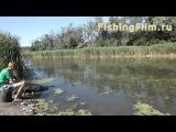 Ловля карася штекером на реке Тузлов. Прикормка для карася. Ловля карася на поплавочную удочку