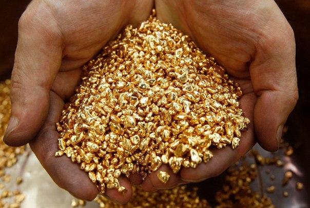 половины всего золота,