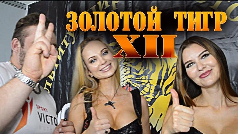 Золотой Тигр XII