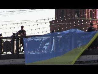 В Петербурге во время акции в поддержку Украины избили корреспондента «Эха Москвы» - Цензор.НЕТ 1883