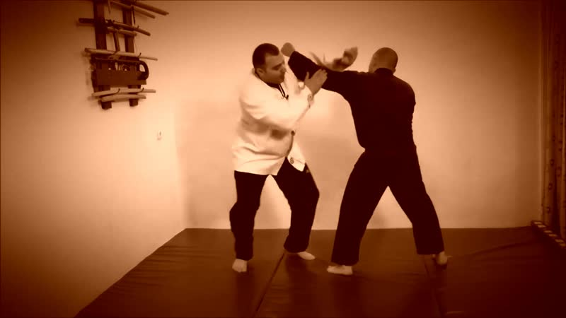 Rebel Hapkido Series 합기도 By Vidadi Hajiyev (54)