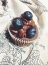 Cupcake From-Sofi фотография #20