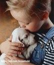 Доверие собаки