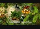 Красивое видео поздравление с Рождеством Христовым!