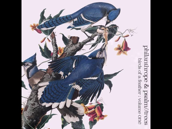Philanthrope Psalm Trees - Birds of a Feather [Full Album]