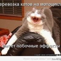 Нарек Паносян, 21 августа 1998, Калининград, id228396854
