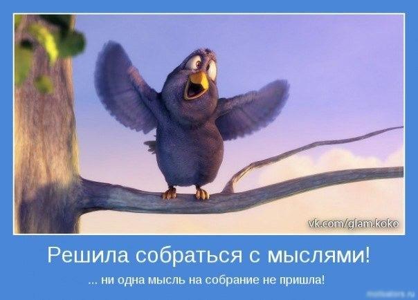 http://cs410731.userapi.com/v410731947/3c50/djlmEfOZ0LE.jpg