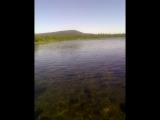 кристально чистая вода, река Щугор, национальный парк