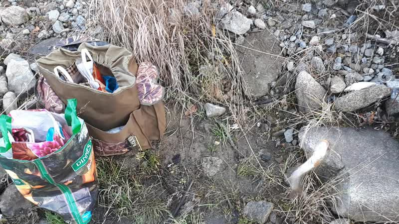 21.10.2018 г. Классная рыбалка в черте города Магадана, река Магаданка ловля форельки и кижуча.