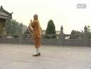 少林小罗汉拳Shaolin Xiao Luohan Quan by Shi De Yang