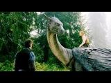 Эрагон / Eragon (2006) Трейлер