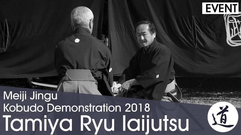 Tamiya Ryu Iaijutsu - Tsumaki Tatsuo - Meiji Jingu Kobudo Demonstration 2018