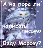 ДЕД МОРОЗ... НОВЫЙ ГОД!