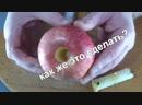 Как удалить сердцевину у яблока?