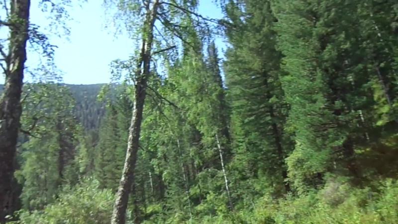 Дорога к перевалу Алёс