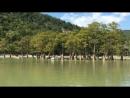 Анапа. Сукко, кипарисовое озеро