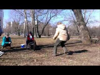 Shepville Wise Bird, Flyball training 10.03.14