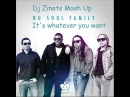 Nu Soul Family vs Johnny Beast It's Whatever You Want Dj Zmets Mash Up