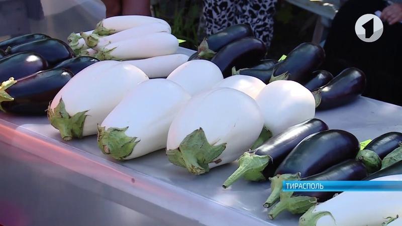 Новые сорта и рынки сбыта приднестровских овощей