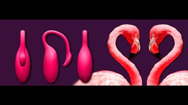 Тренажер интимных мышц вибратор Flamingo Magic Motion