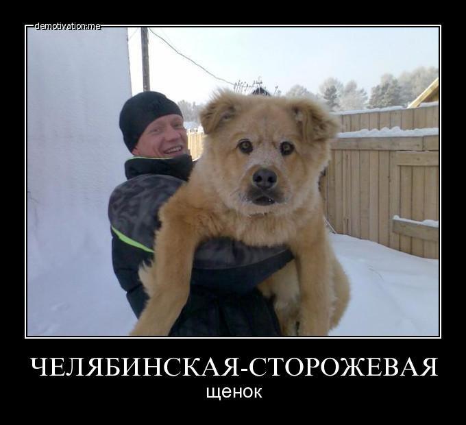 Товарищи веб камеры москвы в реальном времени смотреть онлайн что-то проворчал под