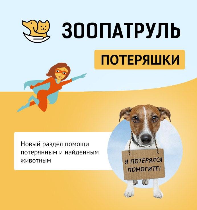 https://pp.vk.me/c322524/v322524584/2345/lrMnYl-gcK8.jpg