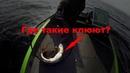 Где найти крупную щуку? Рыболовный гид рассказывает о ловле щуки.