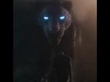 Чёрная Пантера   TV - ролик #41