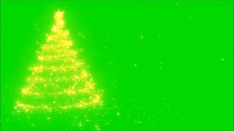 Christmas Green Screen