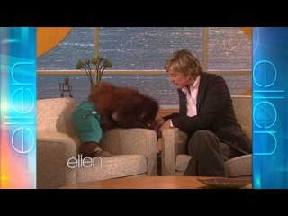 Memorable Moment: Precious the Orangutan
