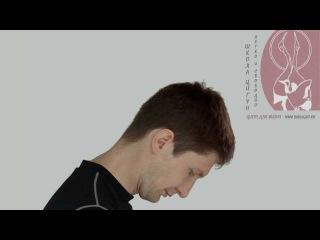 Шея журавля. Медицинский цигун для шейного отдела