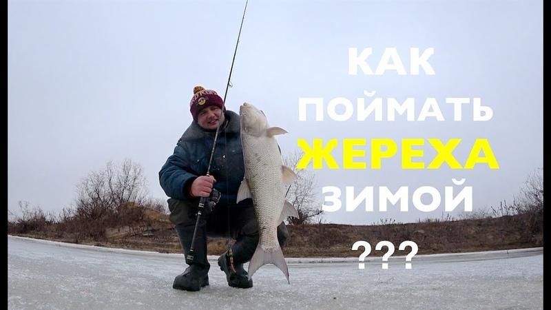 Как поймать ЖЕРЕХА зимой. Зимний ЖЕРЕХ настоящий боец !!Ares Lester Boron 800ML