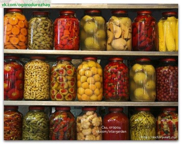 Консервируем урожай. 8 вкусных рецептов