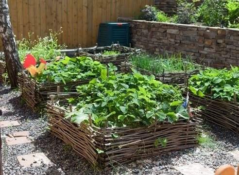 Хитрости садоводов и огородников